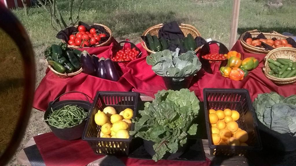 Locally Grown Food in Phoenix, AZ