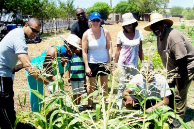 Community Gardening | TigerMountain Foundation